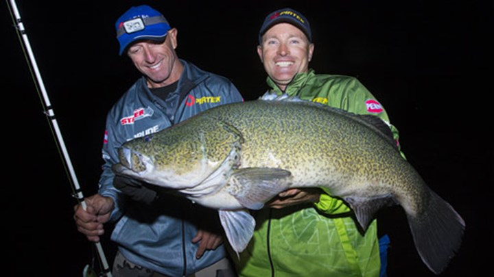Freshwater-fishing-murray-cod-guesty.jpg